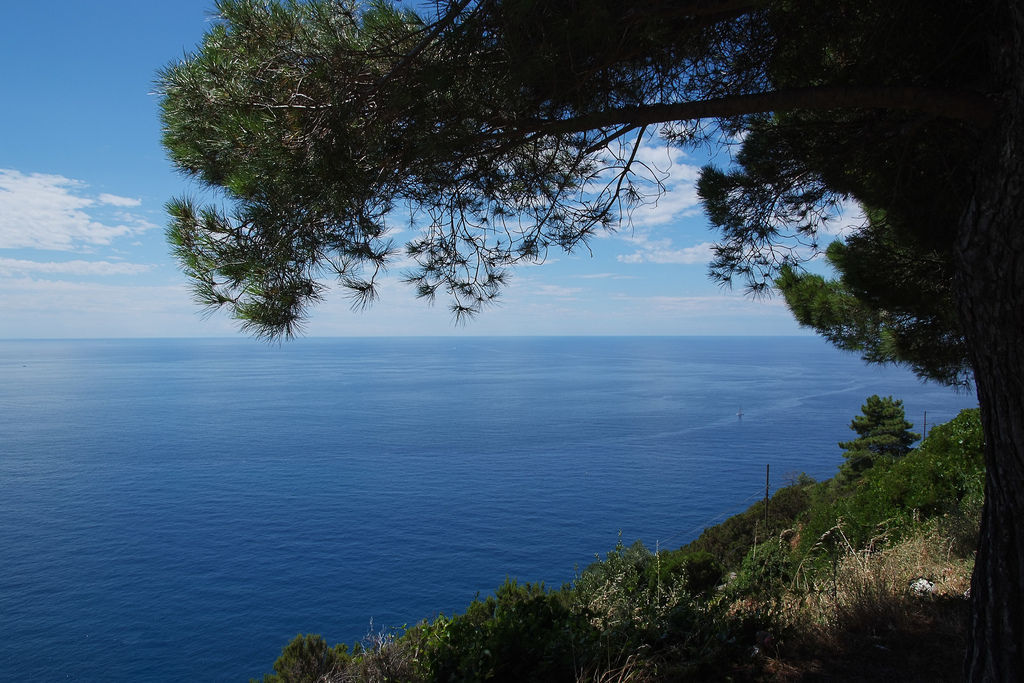 El Mar Mediterráneo se divide en varios mares menores. Uno de ellos es el Mar de Liguria. ¿A qué tres países baña?