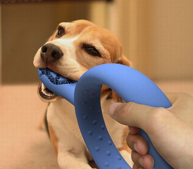 Cepillo de dientes para perro.