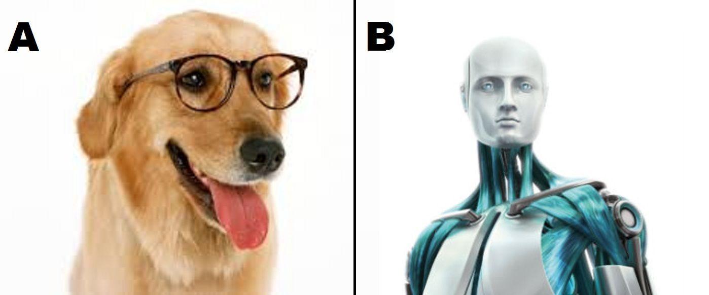 ¿En ser el primer perro inteligente y que habla o en volver a la vida pero no en estado humano?