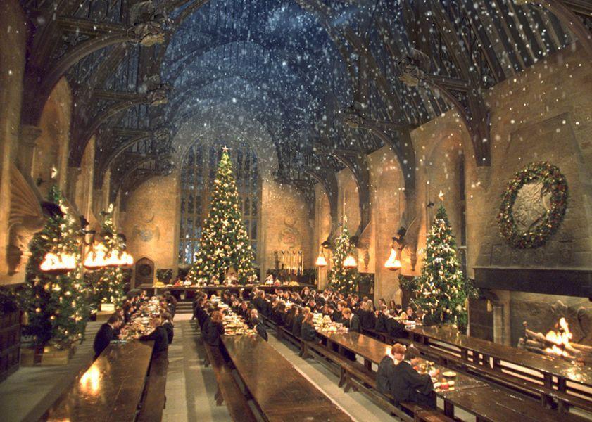 En el libro, en la escena de Navidad de Hogwarts ¿Porque la Profesora Trelawney se negó en un principio a sentarse en la mesa?
