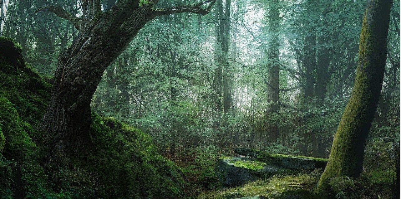 ¿En cuántos juegos de Uncharted salen bosques/selvas?
