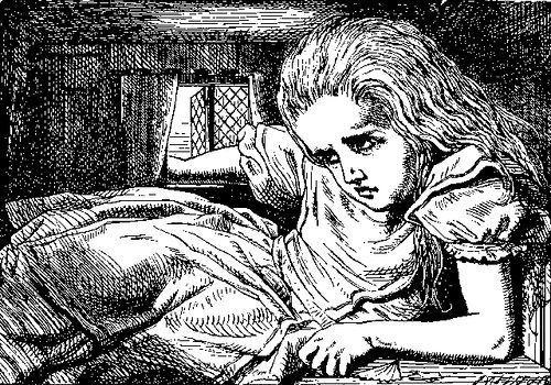 ¿Qué animal entra por la chimenea de la casa del Conejo Blanco y recibe una patada de Alicia?