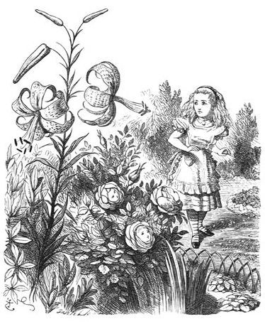 Después de que Alicia juegue en el jardín con un perro, ¿qué encuentra encima de una seta?