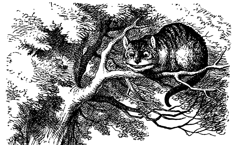 ¿Qué es lo que más le llama la atención cuando ve por primera vez al gato de Chesire?