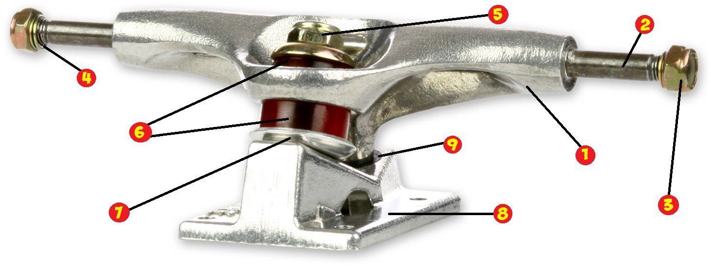 ¿Cuáles son los componentes de un skateboard?