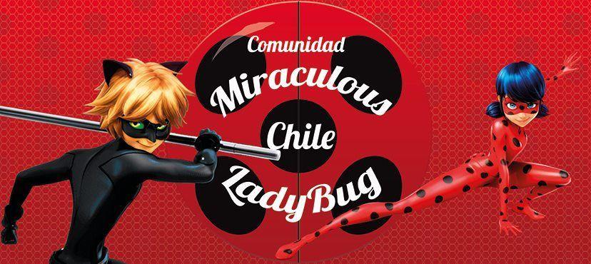 13609 - ¿A qué personaje de Miraculous Ladybug te pareces?