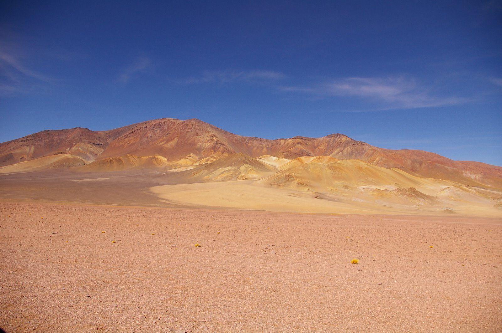 ¿A quién se le considera descubridor de Chile?