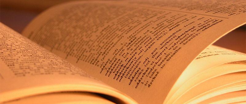¿Cuántos capítulos tiene la novela?