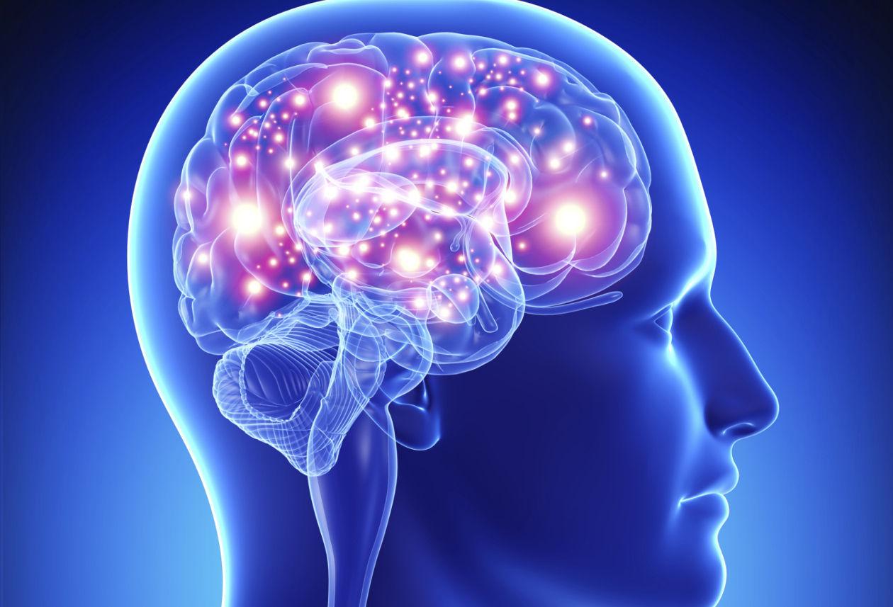 14073 - Comprueba si estás por encima de la media en inteligencia lógica o visual