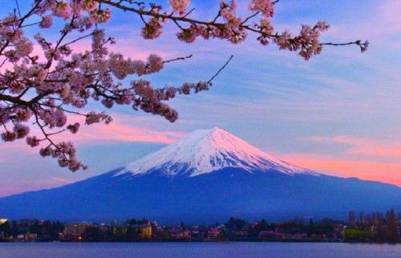 14265 - ¿Cuál es tu nivel de japonés? (fácil)
