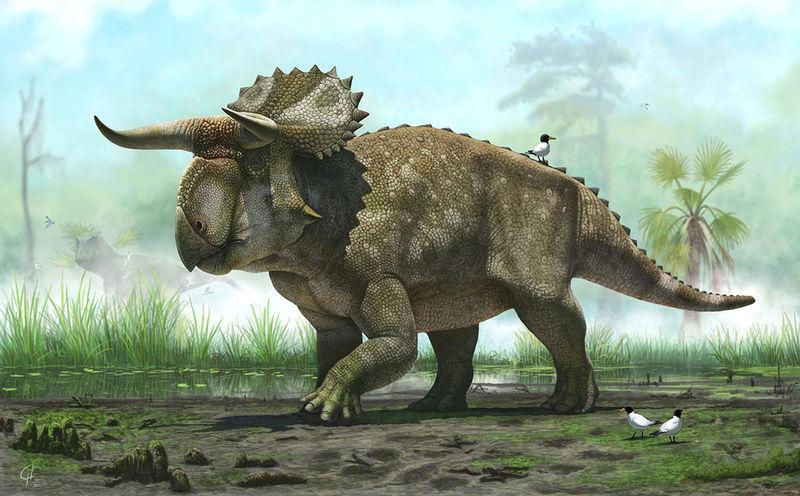 14345 - ¿Cuánto sabes de animales extinguidos?