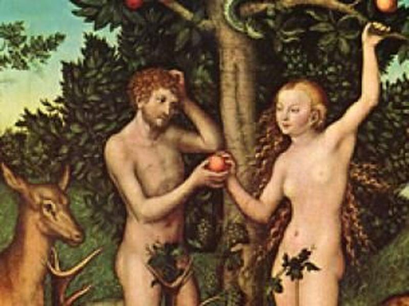 ¿Qué fruta prohibida comieron Adán y Eva según la Biblia?