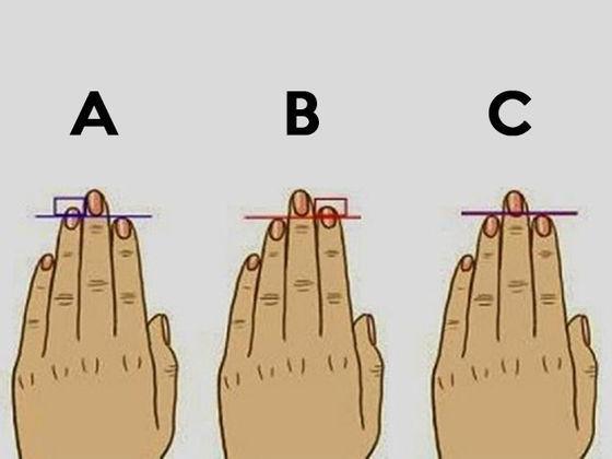 14658 - ¿Qué dice la longitud de tus dedos de tu personalidad?