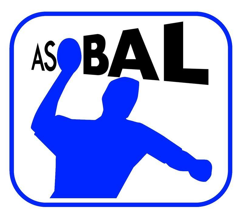 14661 - ¿Sabrías reconocer todos los escudos de la Liga ASOBAL de balonmano?