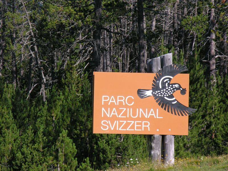 Suiza tiene 4 idiomas oficiales,pero el único exclusivo del país alpino es el romanche ¿Qué cantón acoge a más de sus hablantes?