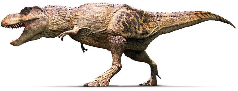 ¡Que me he flipado! ¡Un T-Rex! (y éste sabe que estás ahí a su alcance, pero no exactamente dónde)