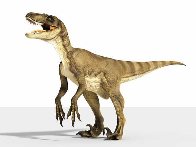 ¿Y por qué no un velociraptor? Está solo y ya te ha visto, te ves delicios@, tienes 20 segundos...