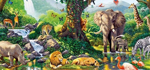 14746 - ¿Cuánto sabes del reino animal?