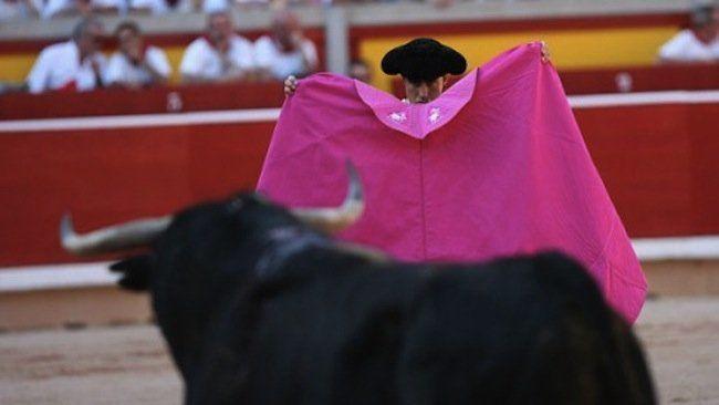 ¿Qué color les provoca a los toros?