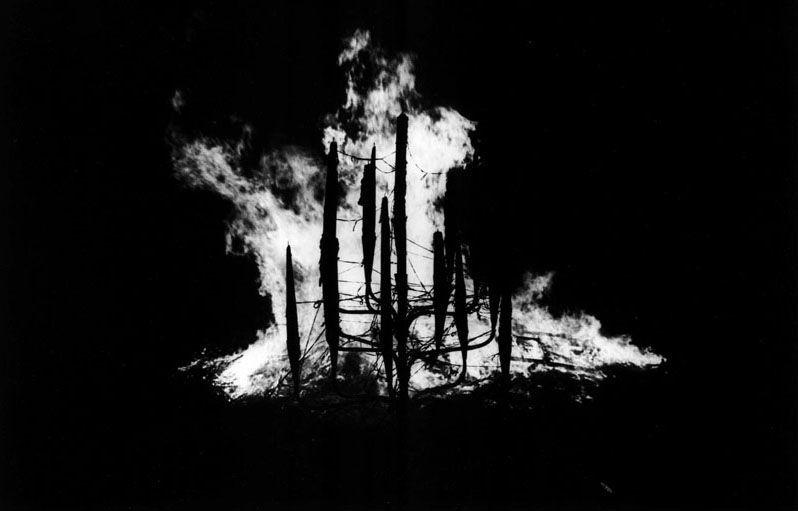 Corres fuera de la pequeña ciudad al bosque sin preocuparte por tu madre ni tu hermano. Ves como tu ciudad arde...