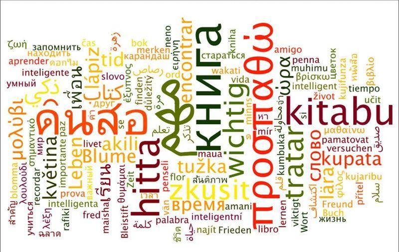 15720 - ¿Podrías identificar un idioma a partir de una frase suelta?