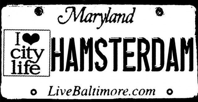 ¿Qué es Hamsterdam?