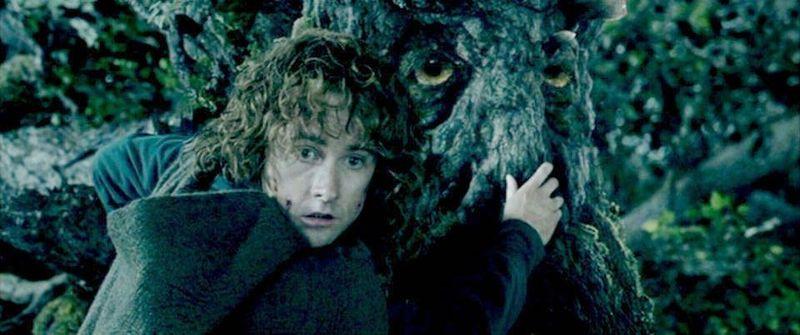 Eres Pippin y Merry en el Bosque de Fangorn. Bárbol os lleva de vuelta a casa ¿Seguro que queréis eso?