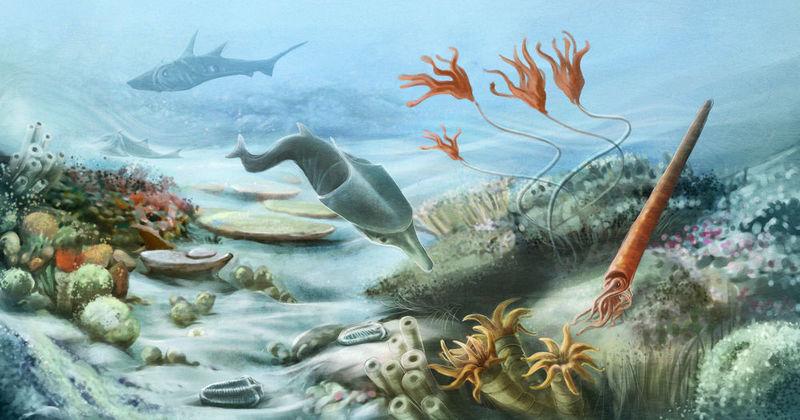 En el SILÚRICO, los peces adquieren una utilísima novedad evolutiva, que por suerte nosotros aún tenemos. ¿Cuál es?