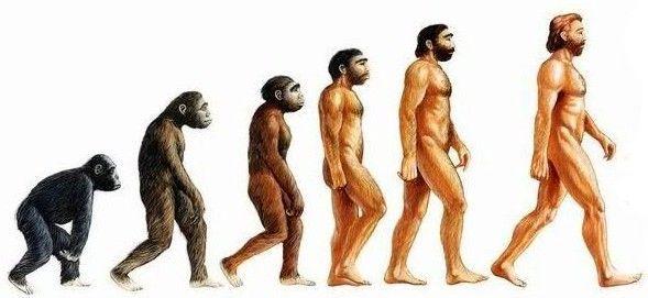 ¿Qué color de piel tenían los primeros Homo sapiens cuando aparecieron en el PLEISTOCENO?