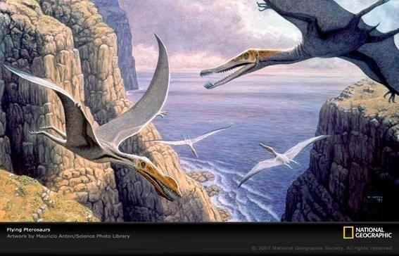 A finales del CRETÁCICO existieron pterosaurios gigantes con una envergadura alar de unos 10 m, como el conocido...