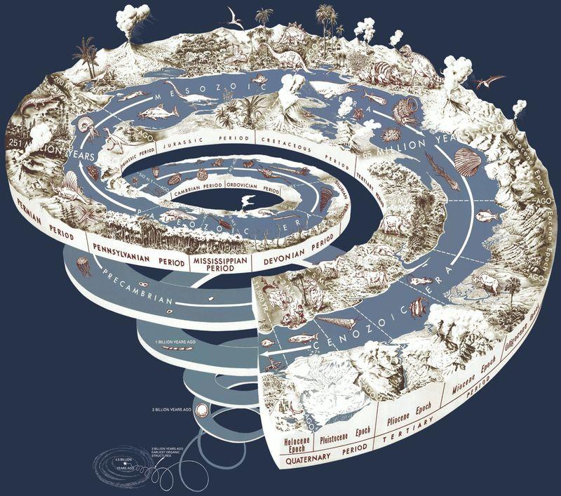 16550 - ¿Cuánto sabes de la Historia de la Vida?