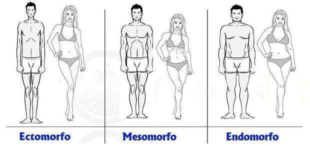 Mi cuerpo se ve: