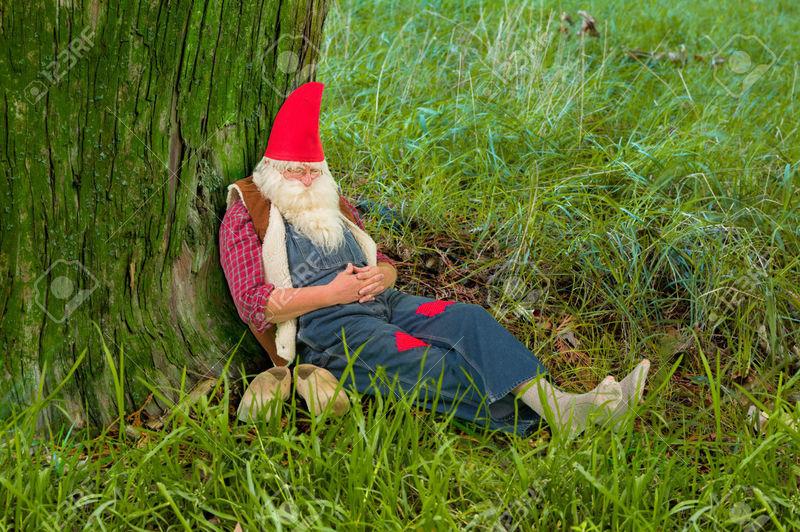 Sigues andando sin rumbo. Los árboles cada vez son más grandes y la lluvia es insoportable. Vas a dormir debajo de un árbol...