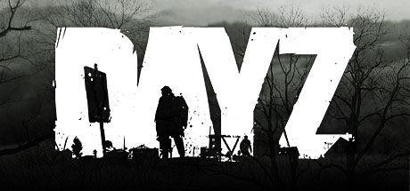 17598 - ¿Qué clase de superviviente de DayZ eres?
