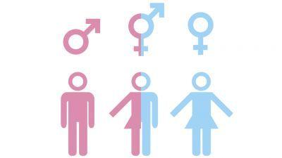 17912 - ¿Mujer o Mujer transexual?