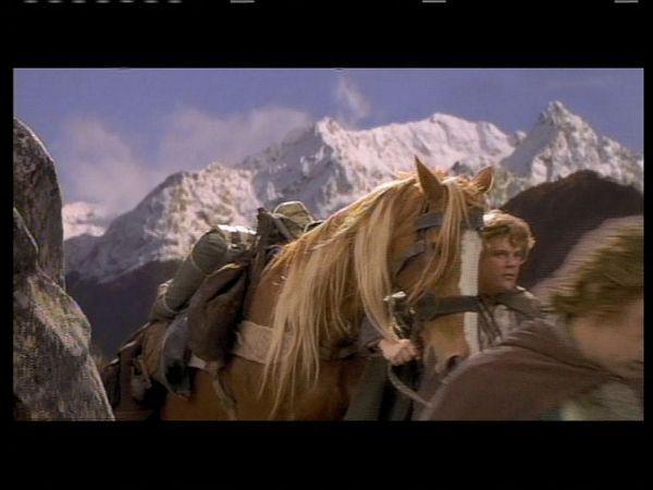 ¿Dónde llega el pony Bill después de que la Comunidad entra en Khazad-dûm?