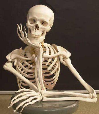 La mayoría de los huesos humanos son pares (Hay uno en la izquierda y otro en la derecha). ¿Cual de los siguientes es impar?