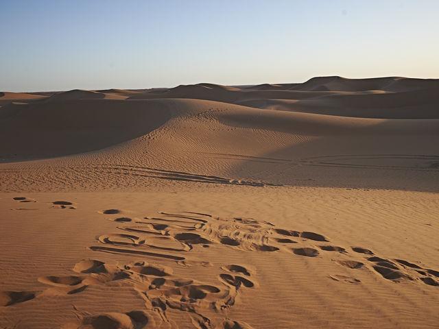 ¿Cuál es el mayor desierto del mundo?