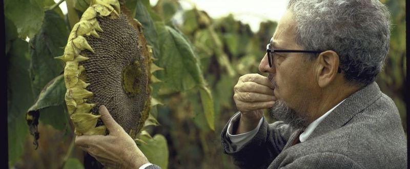 J. I. Rodale fue un gran defensor de la comida sana y un pionero en la agricultura sostenible, ¿Cómo Murió?