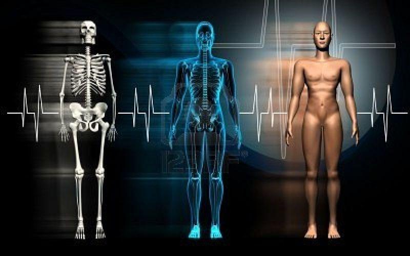 19493 - ¿Cuánto conoces acerca de tu cuerpo?