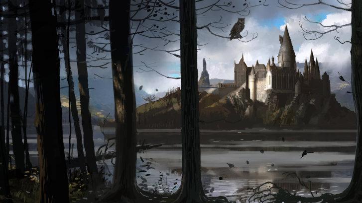 19512 - ¿A qué te dedicarías en el universo de Harry Potter?