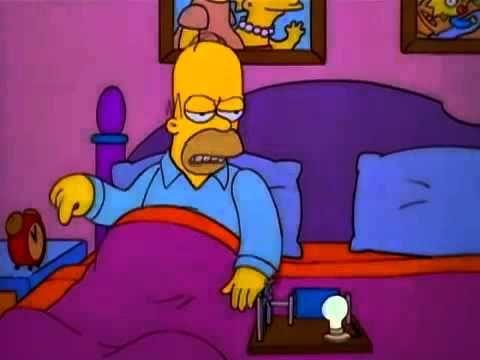 Lisa en esta casa obedecemos las leyes de la ...