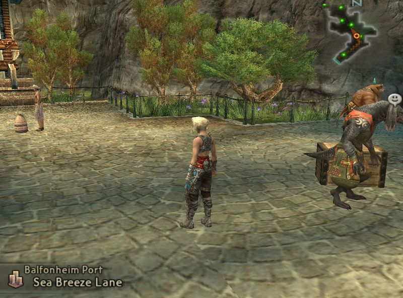 Has llegado a Arcadia y has visto al hume llamado Vaan. ¡Ofrecen una recompensa por su captura!