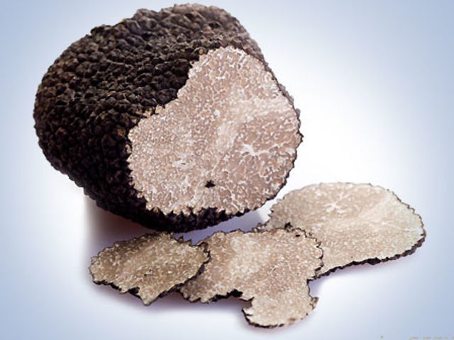 Verdadero o falso: Las trufas que se cultivan bajo tierra y valen su peso en oro, son olidas por los cerdos.