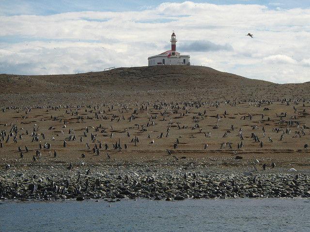 ¿A que país pertenece esta isla habitada de pingüinos?
