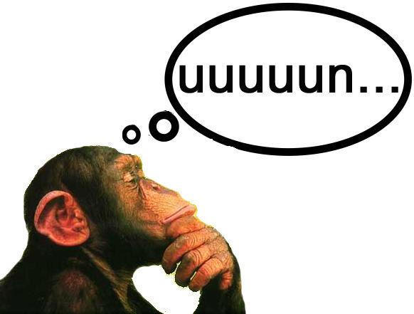 Cuando piensas en el fin de semana lo primero que se te pasa por la cabeza es...