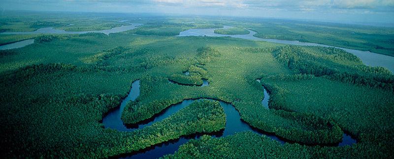 La Congolaise: En este día nace el Sol Y nuestra Congo se pone resplandeciente...