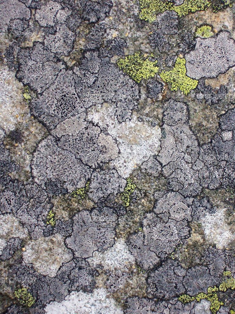 Te llevan ante una pared natural de roca, la llaman El Signo de los Cuatro, cuando estés preparado serás capaz de atravesarla
