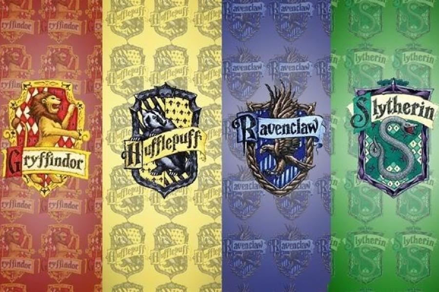 20899 - ¿Cuál es tu casa en Hogwarts?