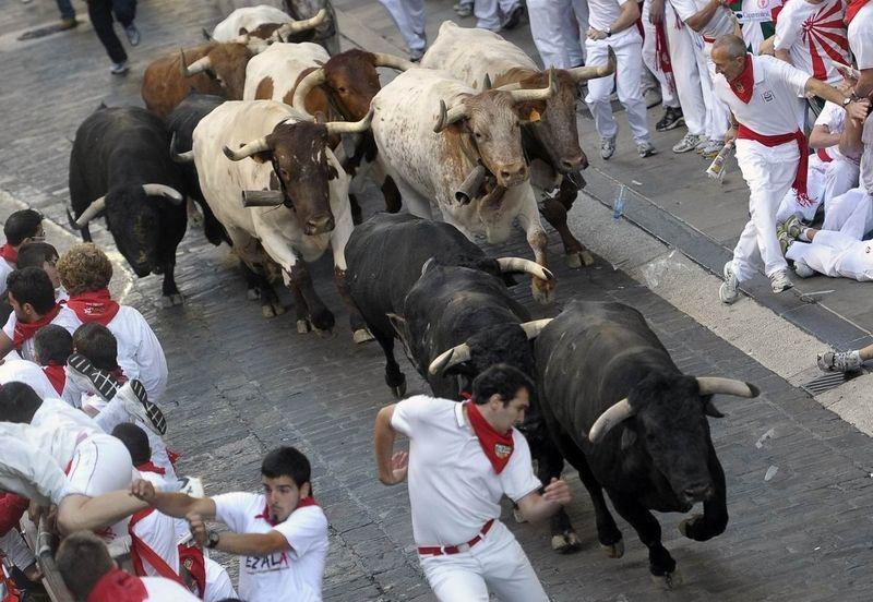 21004 - ¿Qué tal te parecen las Fiestas de San Fermín?